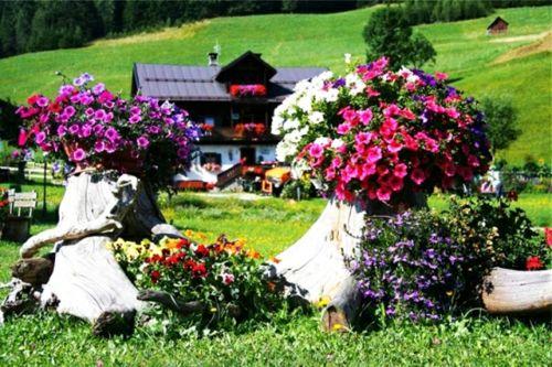Gartendekoration selber machen - garten dekoration selber machen blumenstauden petunien