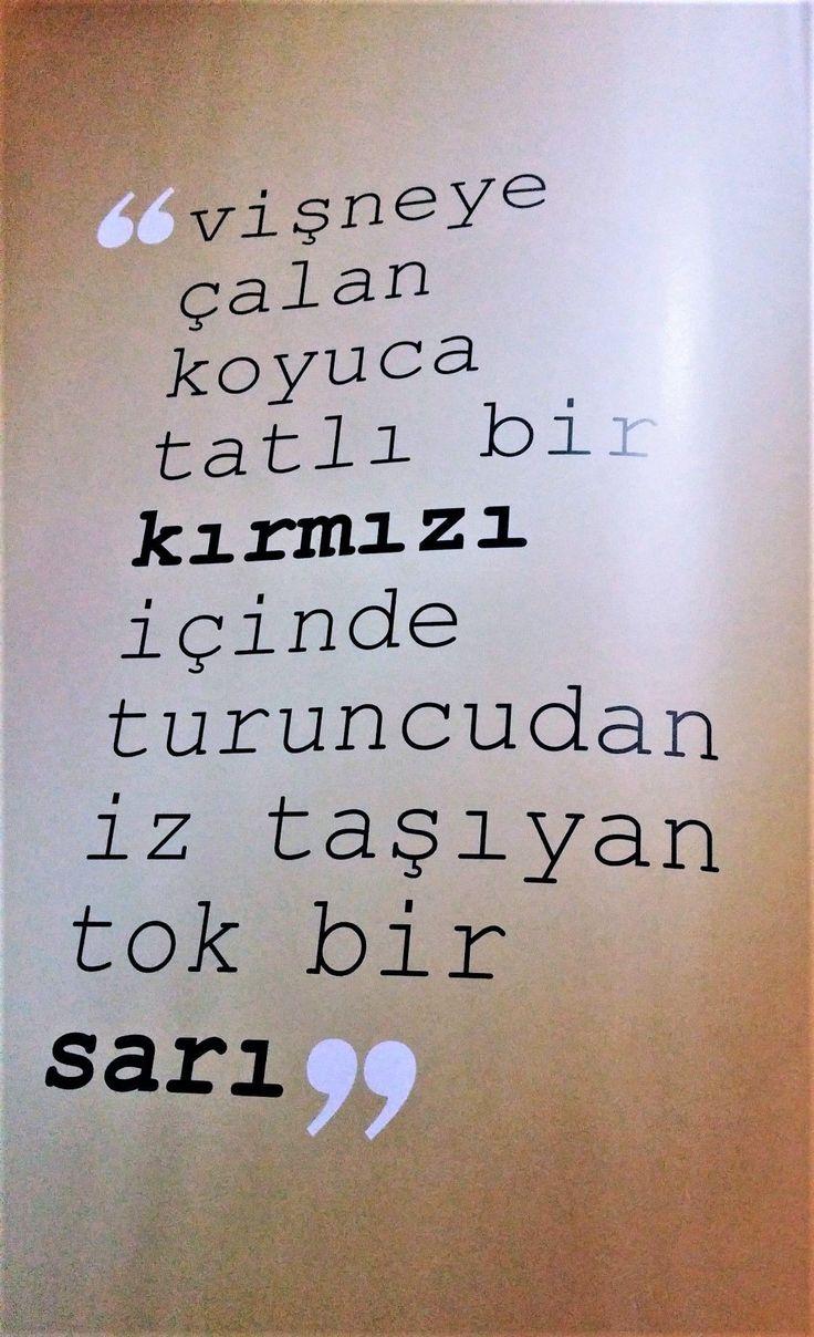 #GS #G.SARAY #CİMBOM💛❤