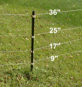 6 Far Sighted Cool Ideas Metal Fence Panels Bamboo Fence