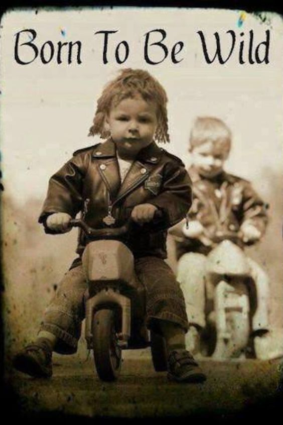The 50 All Time Funny Biker Quotes and Sayings | Custom Motorcycles & Classic Motorcycles - BikeGlam