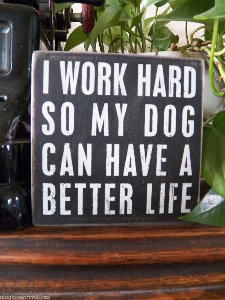 """PBK Wood Wooden 5"""" x 5"""" BOX SIGN """"I Work Hard So My Dog Can Have a Better Life"""""""