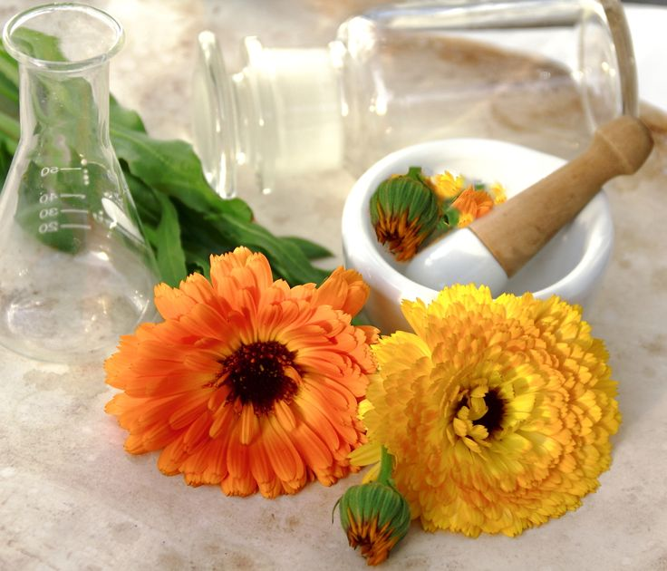 6 Household Herbs for Glowing Skin - http://m.activebeat.com/your-health/6-household-herbs-for-glowing-skin/
