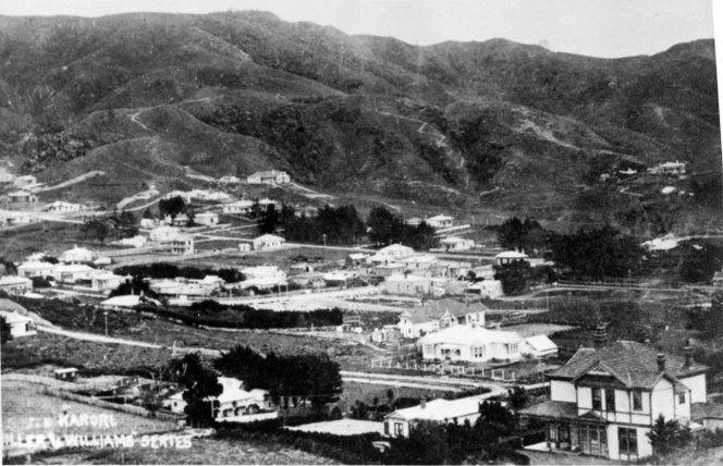 Overlooking Karori, Wellington