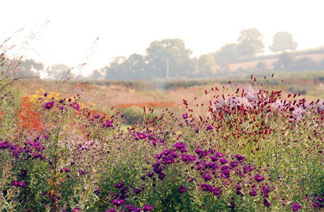 Hauser & Wirth Garden Somerset - Piet Oudolf