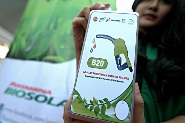 Penurunan Harga Minyak Hambat Kebijakan Biodiesel