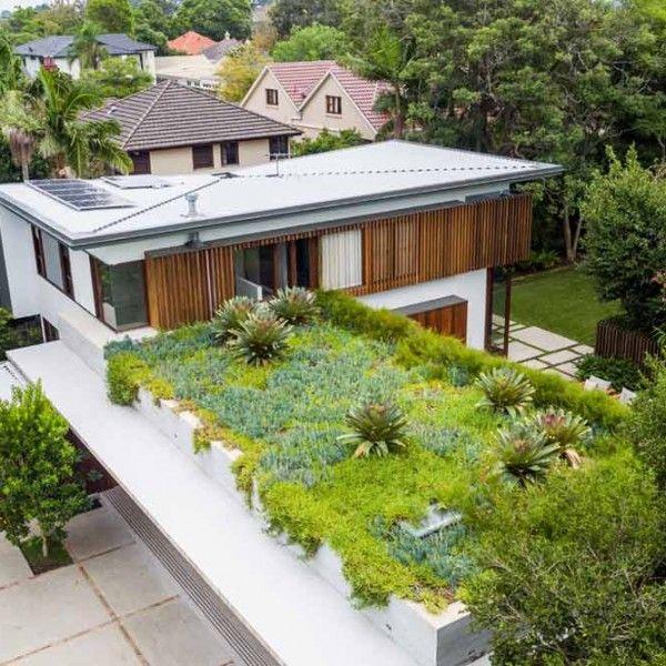 Harrison S Landscaping Hunters Hill Project Landscapedesign Gardendesign Granddesigns Backyard Renovations Green Roof Design Green Roof
