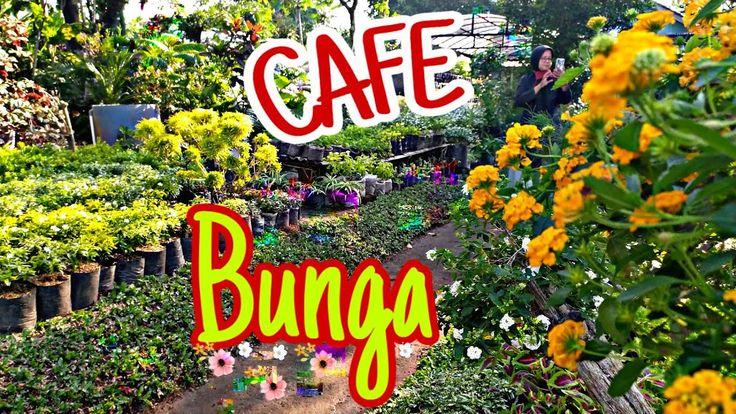 Cafe Bunga di 2020 Bunga, Tanaman, Kebun