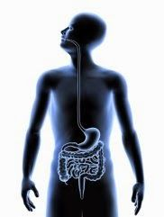 ΑΞΙΟΛΟΓΗΣΗ ΤΗΣ ΚΑΤΑΠΟΣΗΣ - Modified Barium Swallow Test