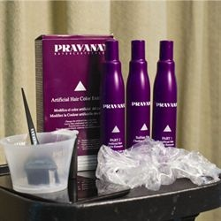 PRAVANA's artificial hair color extractor. I'm obsessed with this. It has worked incredibly well for me, both times I tried it!