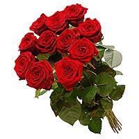 Kwiaty, Kwiaciarnia Internetowa E-kwiaty, Przesyłka Kwiatowa