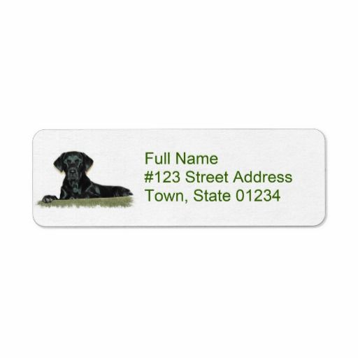 Purchase Address Labels – decalsigns