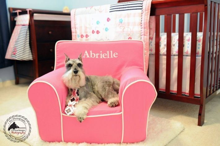 Personalized Pottery Barn Kids Chair