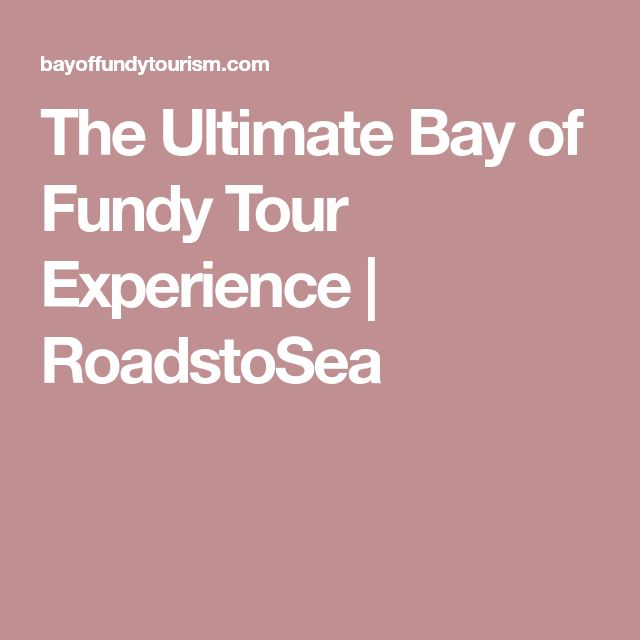 The Ultimate Bay of Fundy Tour Experience | RoadstoSea