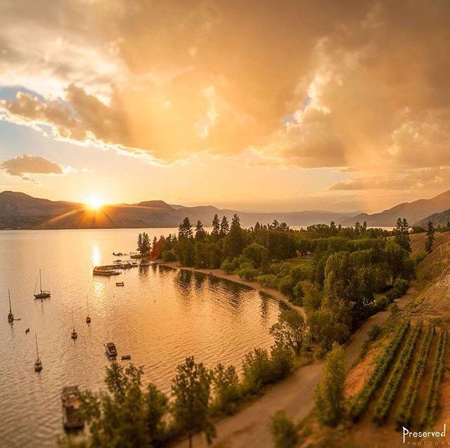 Beautiful sunset in the Okanagan Valley   Naramata, British Columbia