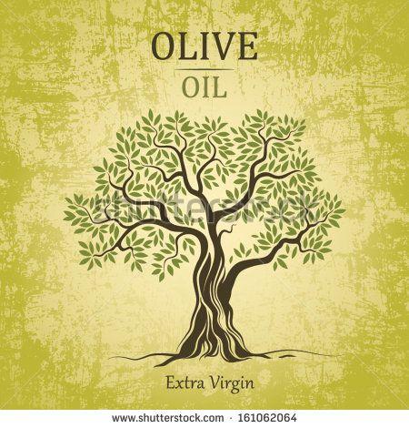 Olive tree on vintage paper. Olive oil. Vector  olive tree. For labels, pack. - stock vector