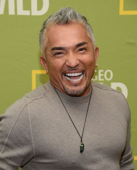 "Cesar Millan Photos - National Geographic Channels' ""2013 Winter ..."
