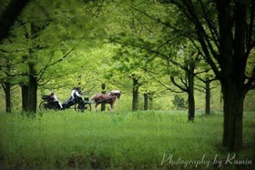 Imagine sipping on champagne while enjoying a peaceful moment for two under the canopy of our centuries old Maples