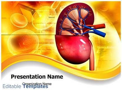 7 best nursing presentation ideas images on pinterest human human kidney powerpoint slide design a powerpoint template design associated with medical health care toneelgroepblik Choice Image