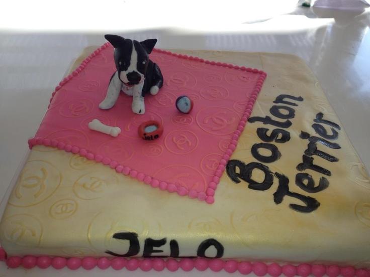 Boston terrier cake kage fondant