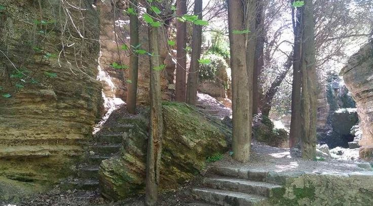 The Beautiful Forest of Rodini Park In Rhodes Greece!  https://theislandofrhodes.com/rodini-park-in-rhodes