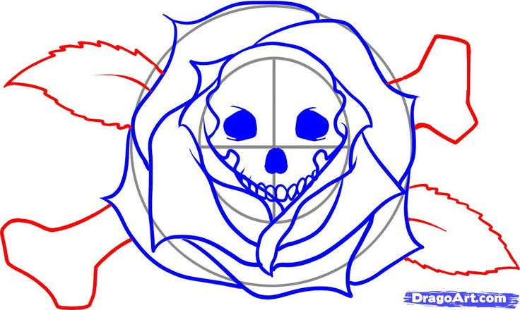 how to draw a sugar skull woman step by step