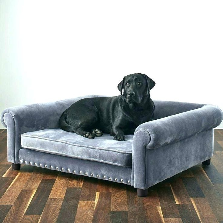Best Extra Large Dog Beds For Large Dogs Amp Giant Breeds