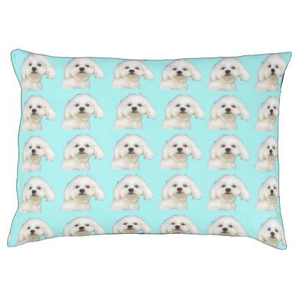 #Maltese puppy pet bed - #maltese #puppy #dog #dogs #pet #pets #cute