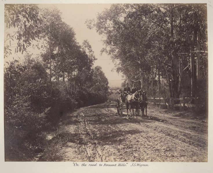 On the road to Pennant Hills in northern Sydney in 1886.A♥W