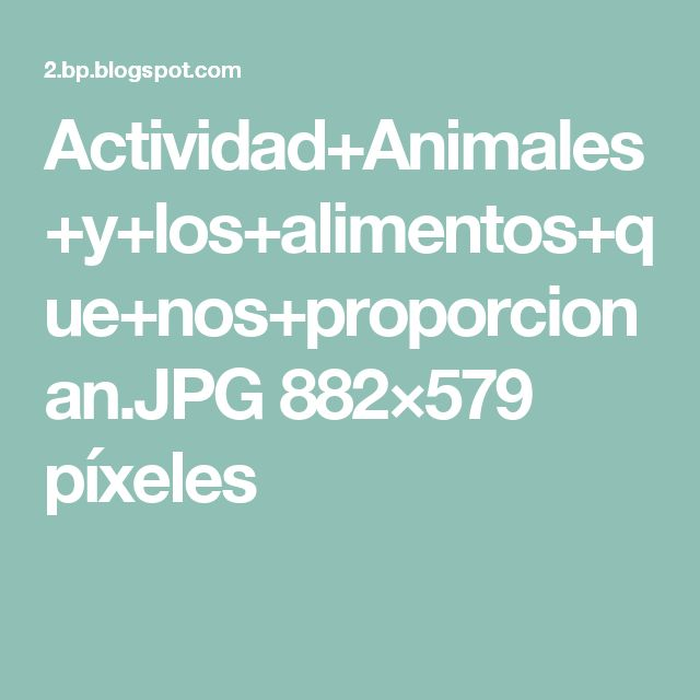 Actividad+Animales+y+los+alimentos+que+nos+proporcionan.JPG 882×579 píxeles