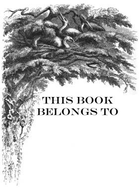 Free printable this book belongs to