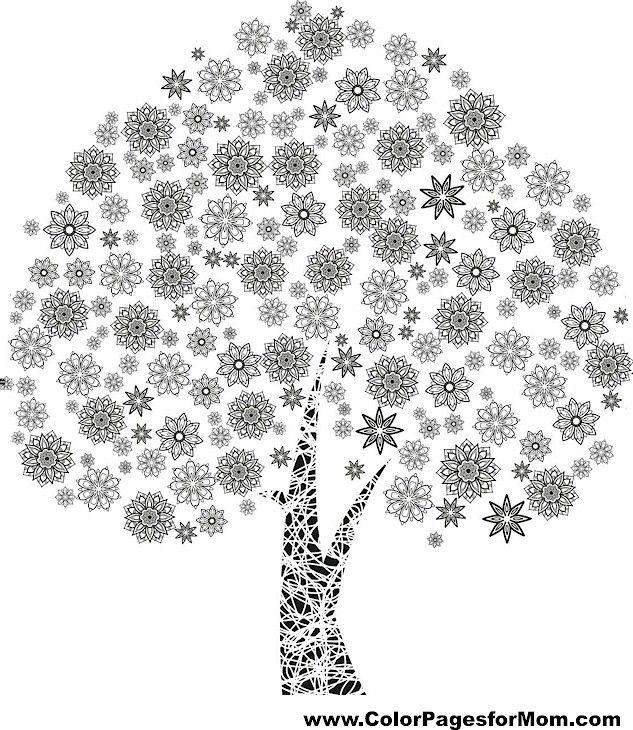 22 best Color Me Zen - Trees images on Pinterest   Coloring books ...