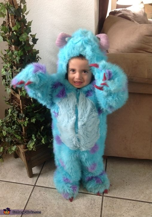 Virginia: Sulley from monsters inc! It was bought from the disney store when the first movie was released!! Vote for him!!!.