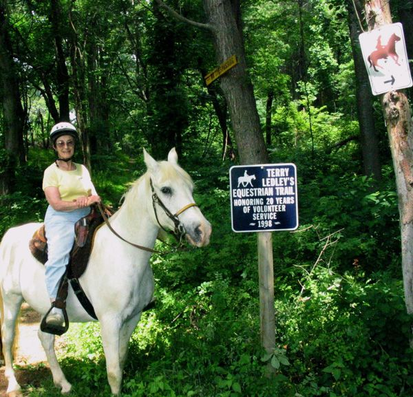 Rider At Terry Ledley Trail Horseback Riding In Maryland S