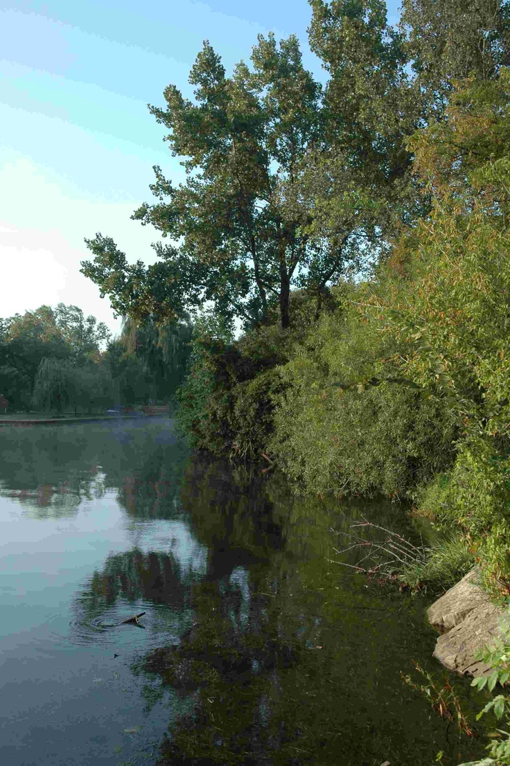 Illinois hancock county elvaston - Lake Zurich Il