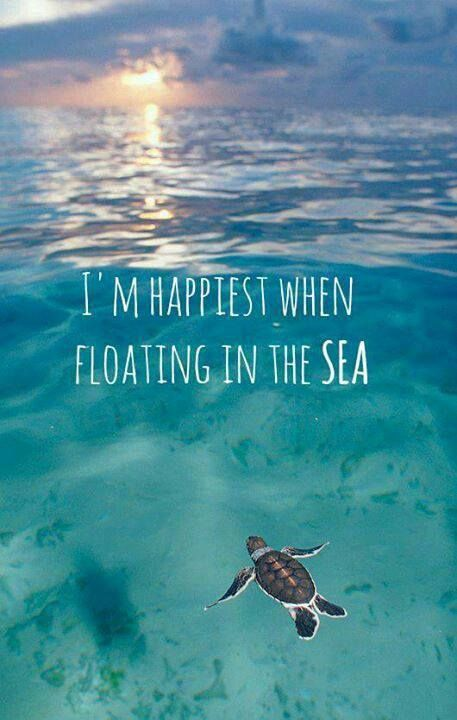 I love this.....just relaxing in the sea - Another tick off my bucket list, feels like the sea of tranquility