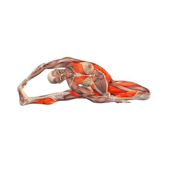 Bend to right leg with rotation - Parivritta Janu Sirsasana right - Yoga Poses | YOGA.com