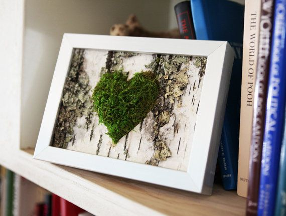 Moss Heart & Birch Bark Rustic Framed Art - Zero Care, Real and Preserved.