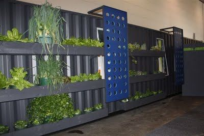 Shipping Container Homes  EXAMPLE TO CLAD WITH COMPLETE LIVING WALL!!