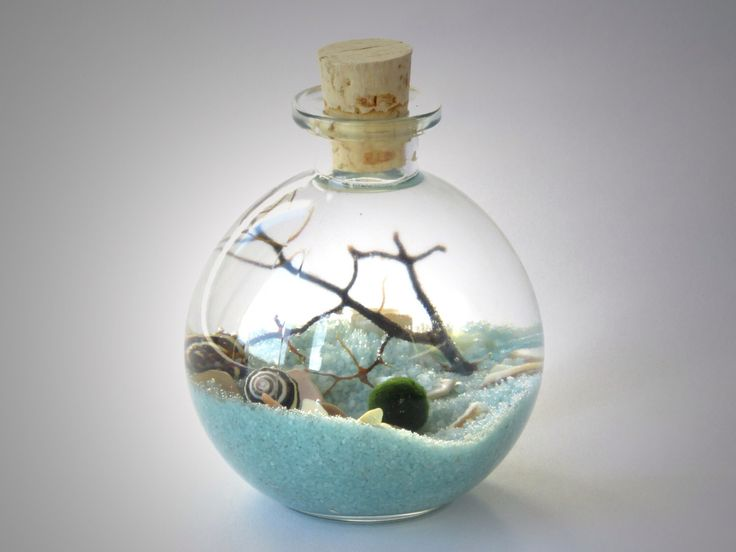 Marimo Bottle Garden Terrarium Kit by Midnight Blossom - Underwater Terrarium with living japanese moss ball, sand, pebbles and sea fan. by MIDNIGHTinSEATTLE on Etsy https://www.etsy.com/listing/171681610/marimo-bottle-garden-terrarium-kit-by