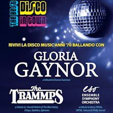 The Best Disco in Town