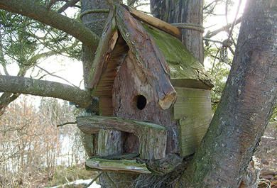 Læsernes flotte fuglehuse - 2 | Gør Det Selv