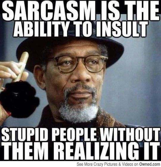 So Funny Sarcastic Meme : Best images about sarcasm on pinterest narcissist