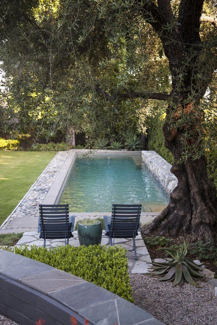 A Pasadena Garden Mixes Fresh And Modern Design With A Rustic Style Swimming Pools Backyard Pool Patio Decor Swimming Pool Designs