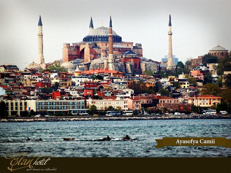 Güzel İstanbul'u bu sıralar ziyaret eden bir diğer misafirlerde Yunuslar :)  Şu güzel manzaraya ne kadar da yakışıyorlar, değil mi? #elanhotelistanbul #ayasofya #hagiasophia