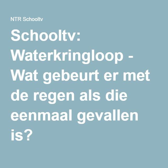 Schooltv: Waterkringloop - Wat gebeurt er met de regen als die eenmaal gevallen is?