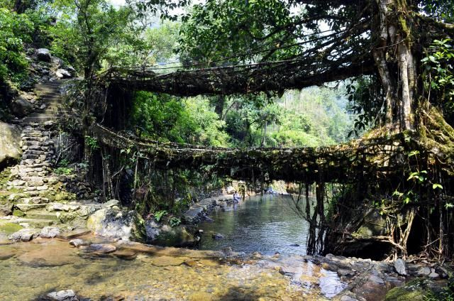 India Off the Beaten Track: Discover the Beauty of North East India: Meghalaya