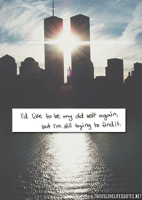 Looking For Love Quotes Life Quotes Quote And Cute Quotes