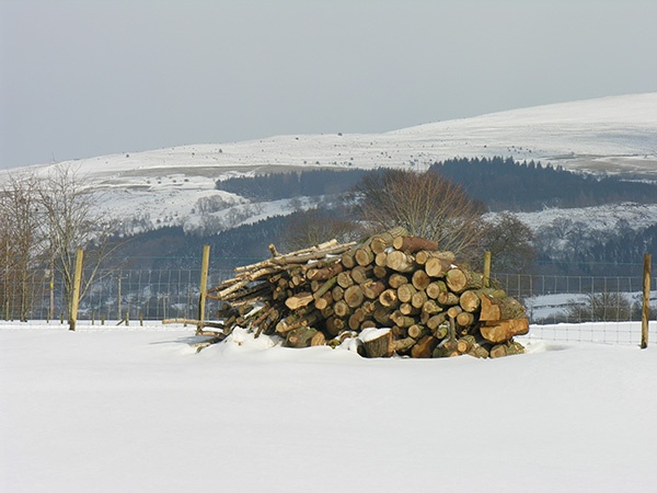Logs already collected for the woodburners at Rivercatcher Luxury Holiday Cottages - www.rivercatcher.co.uk