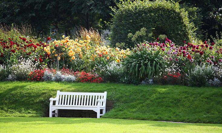 Скамейка на клумбе. #газон #lawn #скамейка #клумба #сад #дача #дизайн