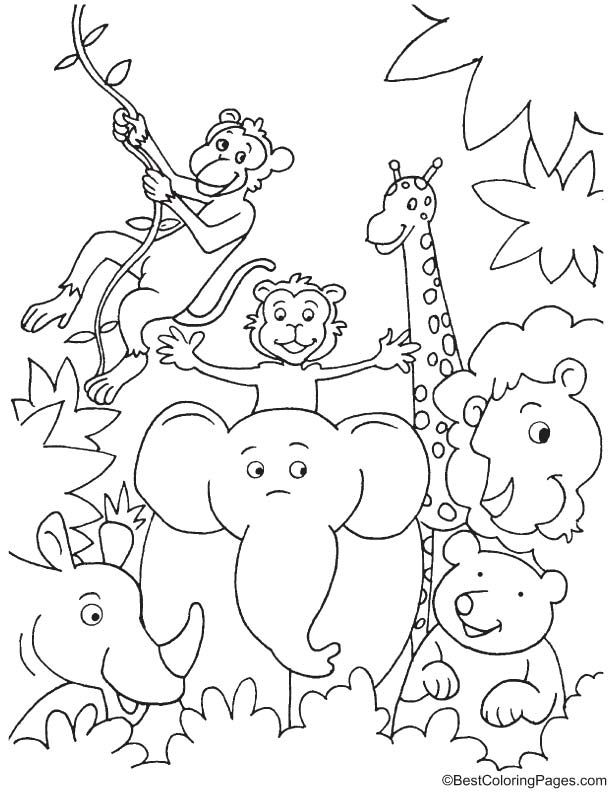 Fun in jungle coloring page | Zoo coloring pages, Zoo ... | printable colouring pages jungle animals